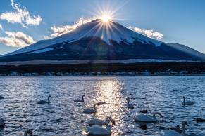 Hành trình khám phá xứ sở mặt trời qua hình ảnh du lịch Nhật Bản
