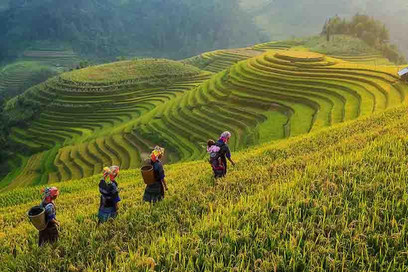 NB – Mộc Châu – Sơn La – Điện Biên - Mường Phăng – Hòa Bình (4N3D)