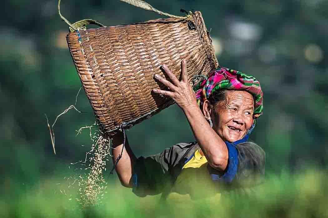 Tour liên tuyến Đông Tây Bắc: Hà Nội-Sa Pa-Hà Giang-Bắc Hà - Cao Nguyên Đá Đồng Văn