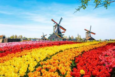 Visa Hà Lan